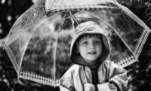 umbrella-1-2